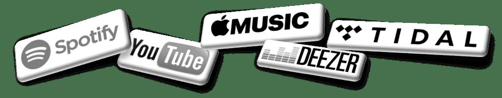 CSPC streaming Spotify Apple Music TIDAL Deezer YouTube Genie AWA Xiami